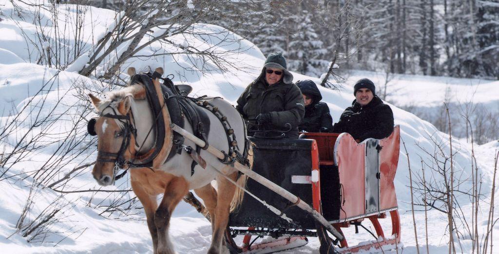 Potete scegliere le offerte con l'emozionante escursione in slitta nel Parco del Gran Paradiso