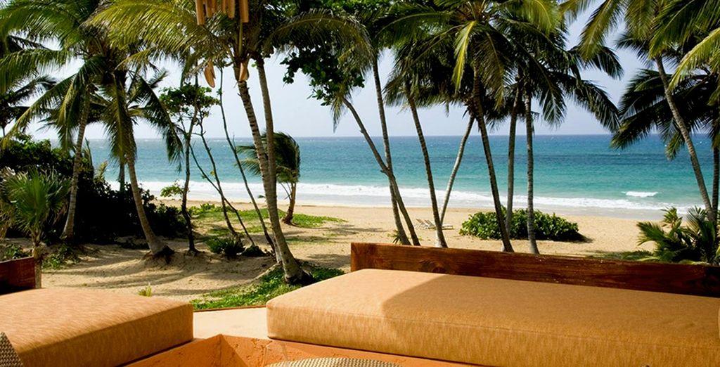Partite per Punta Cana in un resort di lusso