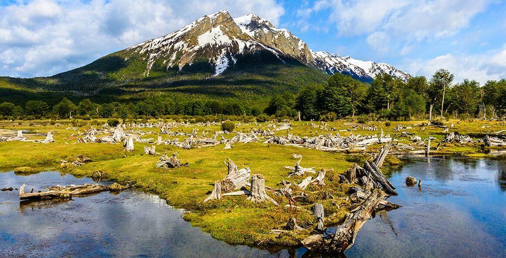 Fotografia di un parco naturale argentino, montagna, foreste verdi e laghi