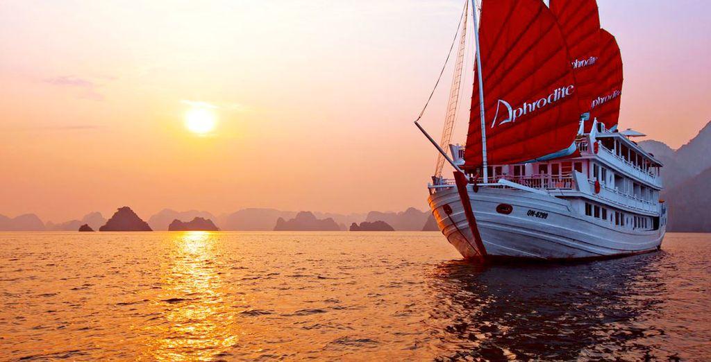 L'Aphrodite Cruise vi regalerà una crociera all'insegna del lusso e del comfort