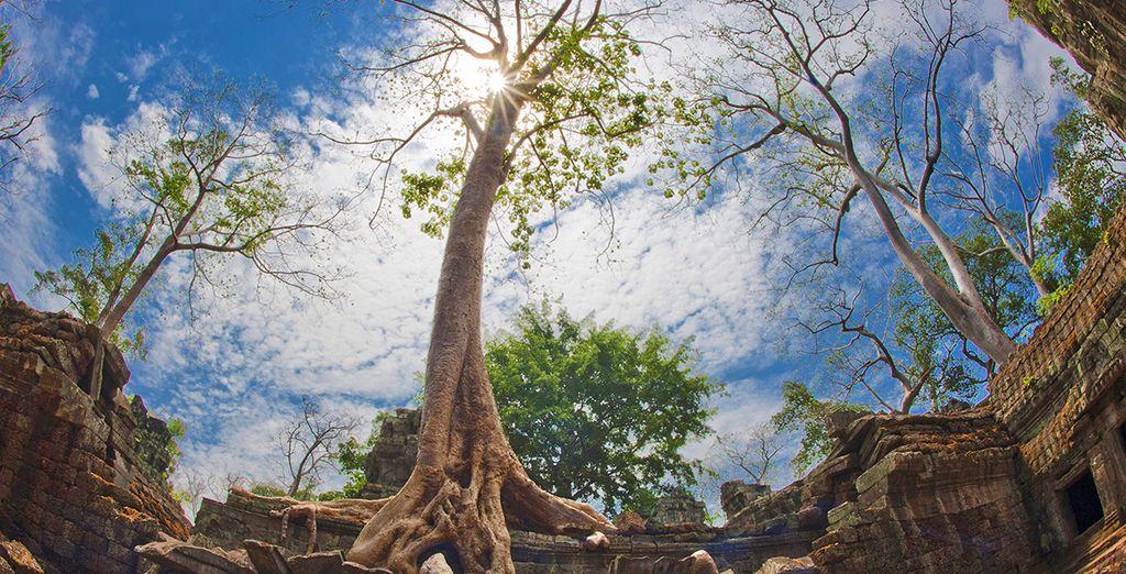 Resterete senza fiato davanti ai Templi di Angkor