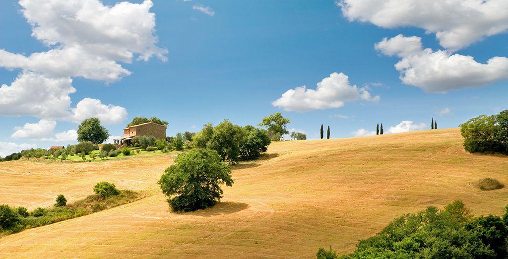 Partite alla scoperta della Toscana!