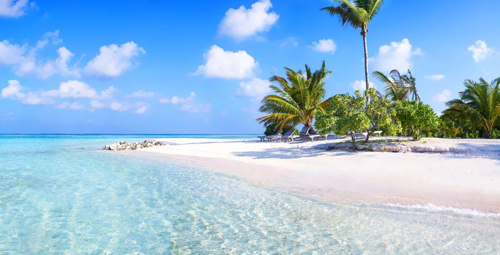 La vostra vacanza in un angolo di paradiso vi aspetta!
