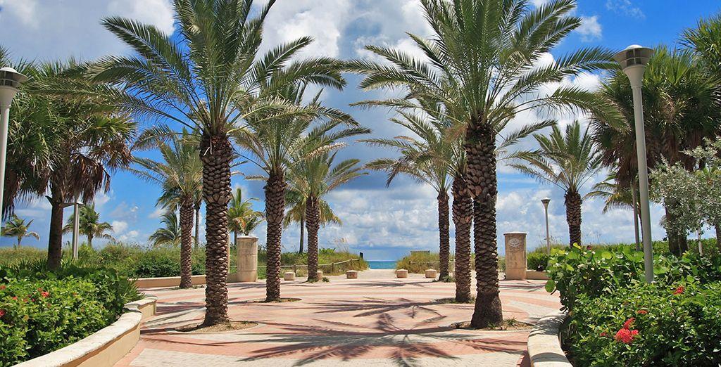 Situato su Ocean Drive a South Beach a pochi passi dal divertimento ma in una posizione invidiabile direttamente sulla spiaggia