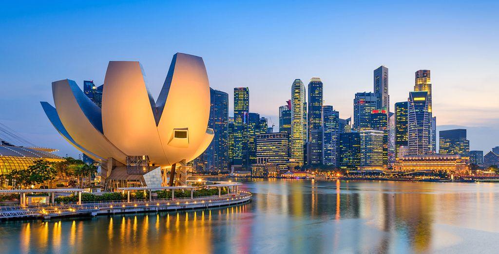 Rimarrete affascinati dalla bellezza caratteristica di Singapore