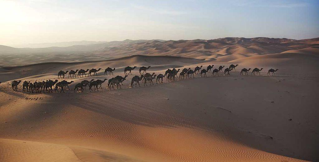 E la vastità del deserto arabo