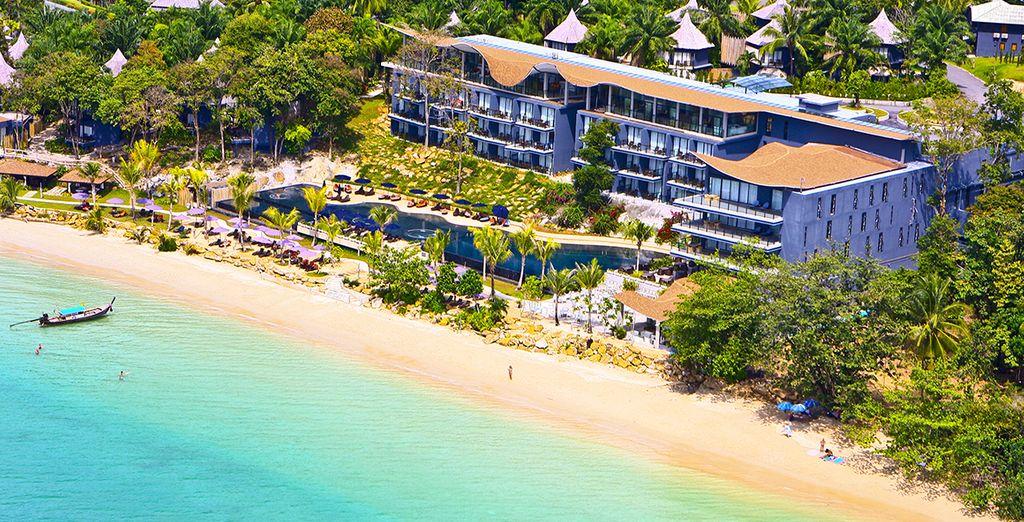 sulla spiaggia dell'hotel avrete tante opportunità per prendere il sole o fare un tuffo