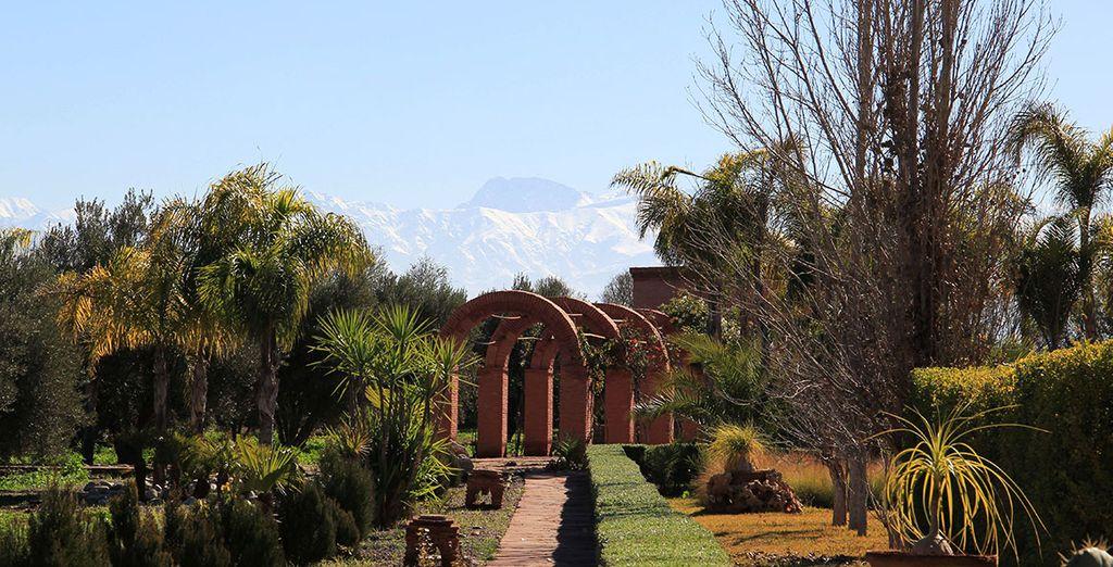 passeggiate nel giardino con una vista panoramica meravigliosa sulle montagne dell'Atlantide