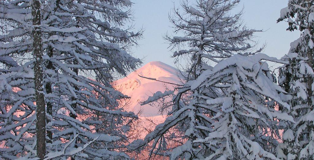 e godetevi tutte le meraviglie del Trentino