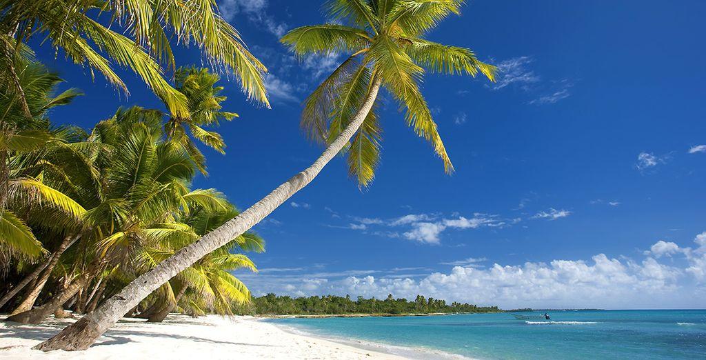 e abbronzatevi al sole dei Caraibi
