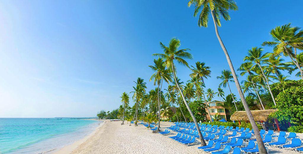 Partite per un soggiorno indimenitcabile a Punta Cana