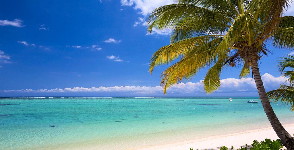 Esplorate i magnifici dintorni dell'isola