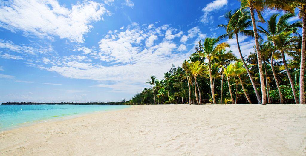 L'unica e inimitabile spiaggia Bávaro vi attende