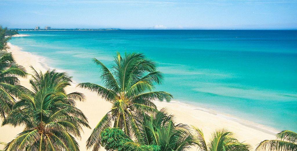 Melia Cohiba a L'Avana 5* + Paradisus Princesa del Mar 5* - Adults Only
