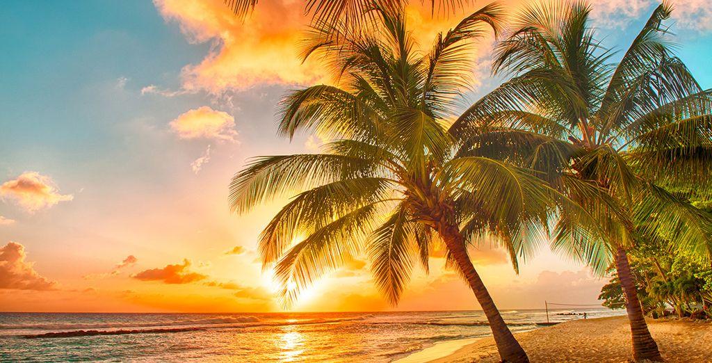 Concludete la serata mano nella mano lungo i 300 metri di spiaggia privata.