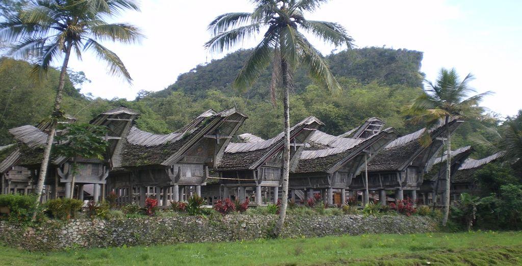 Esplorate le famose Thong House