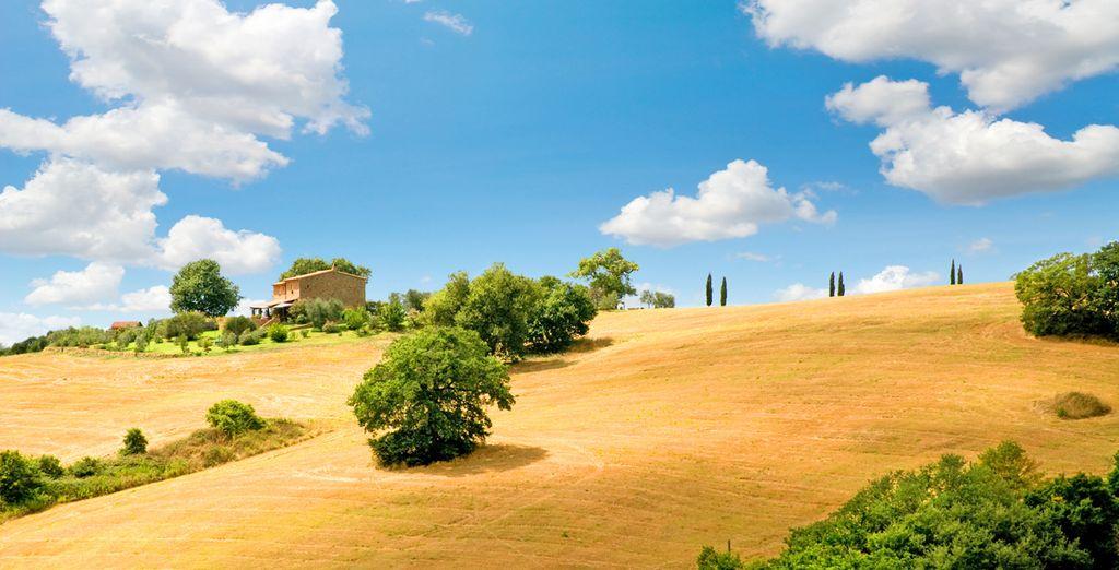Tour della Toscana tra costa e colline