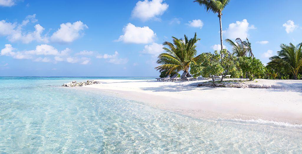 En geniet met volle teugen op de paradijselijke stranden