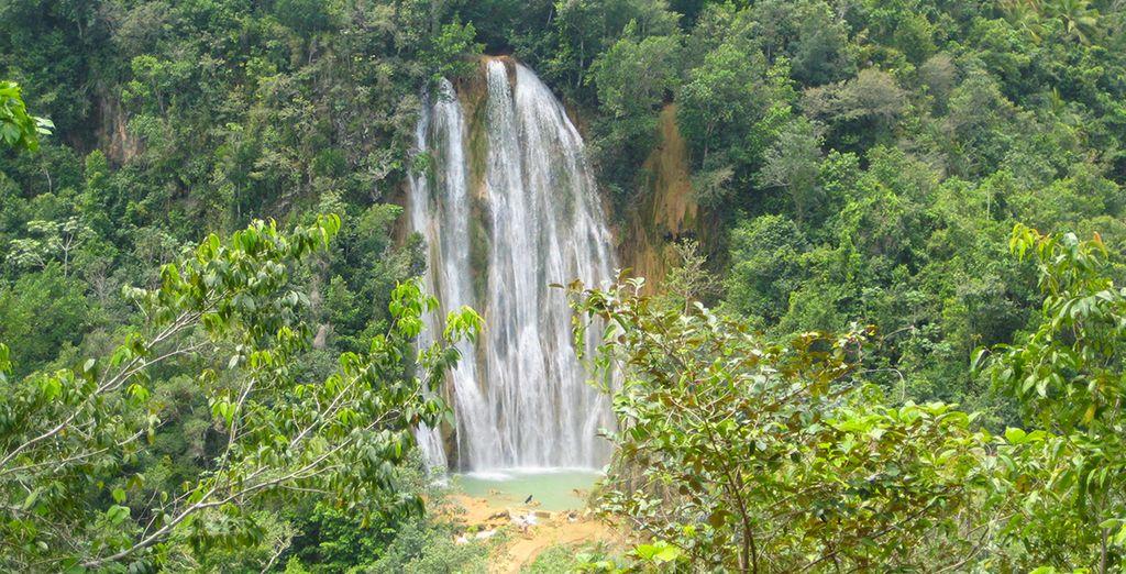 En de groene omgeving ontdekken om de waterval El Limon te bereiken
