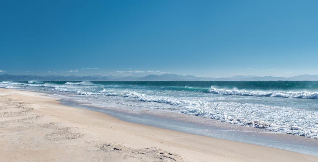 Ga op verkenning aan de Costa de la Luz