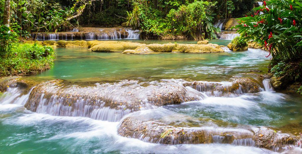 En ontdek Jamaica