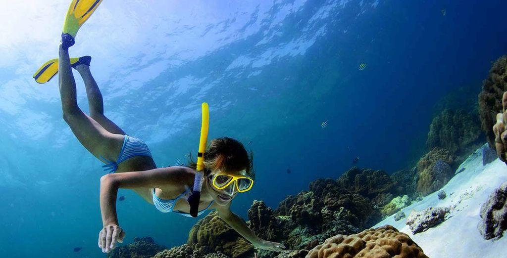 Vergeet uw snorkelmasker niet!