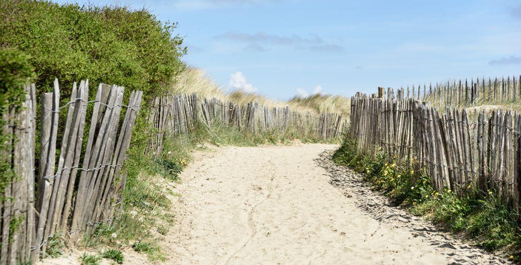 Of ontdek de kust in de buurt van Blankenberge