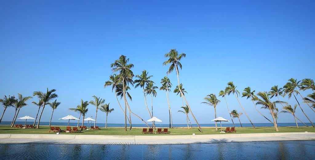 Deze fantastische reis eindigt aan paradijselijke stranden