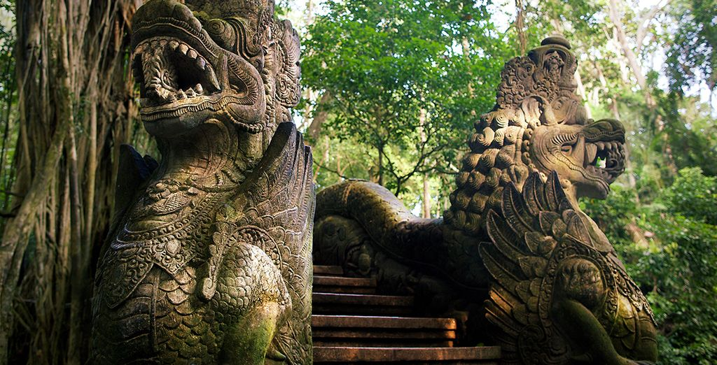 Vlakbij het beroemde Monkey Forest