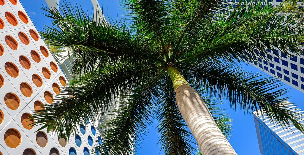 In de Brickell wijk in Downtown Miami