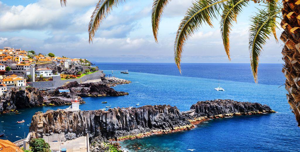 Komt u mee Madeira ontdekken...