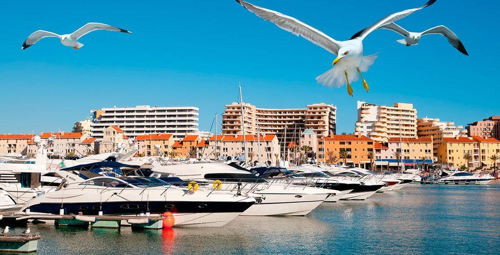 Of de haven van Vilamoura