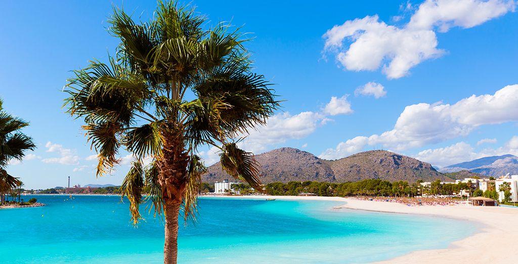 Vamos a Mallorca!