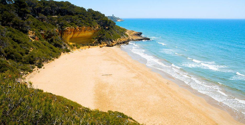 Of de prachtige stranden in de buurt ontdekt