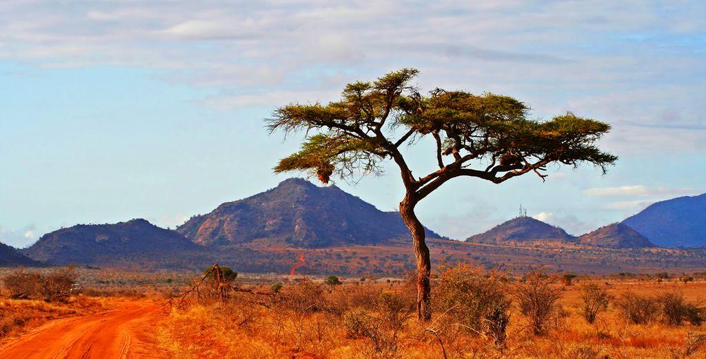 Daarna vertrekt u op safari in het prachtige Keniaanse landachap