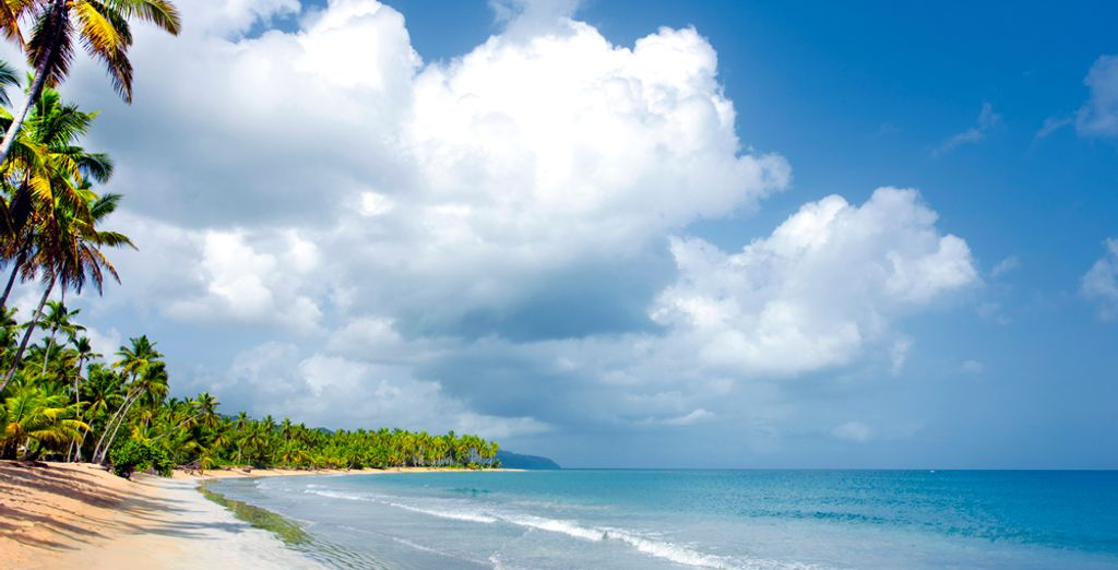 Head to Samana in the Dominican Republic...