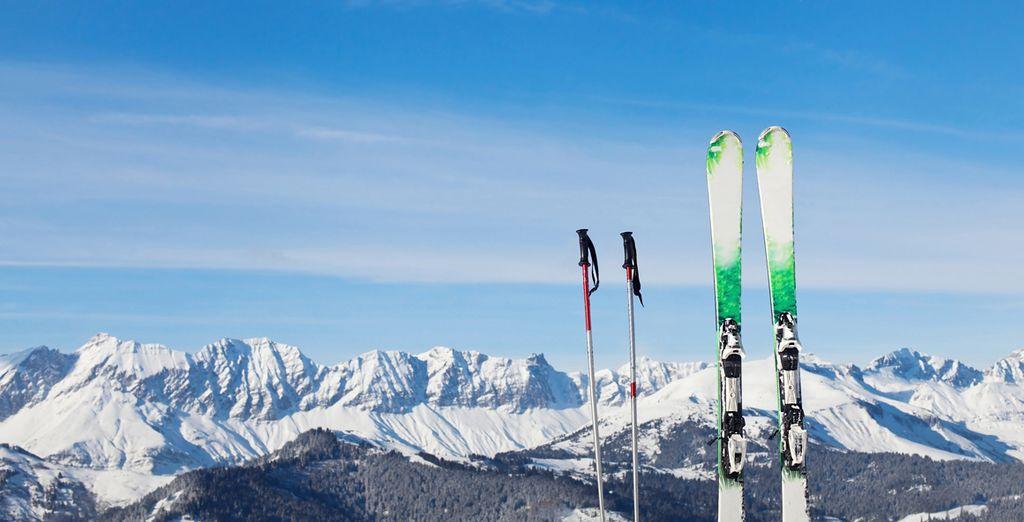 Which has 445 kilometres of marked pistes, 647 snow guns, 219 runs and 107 lifts