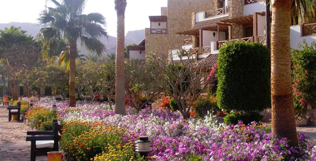 At this welcoming Red Sea resort - Hilton Taba Resort***** - Taba - Egypt Taba