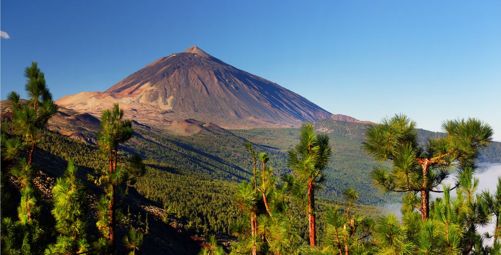 last minute deals to tenerife