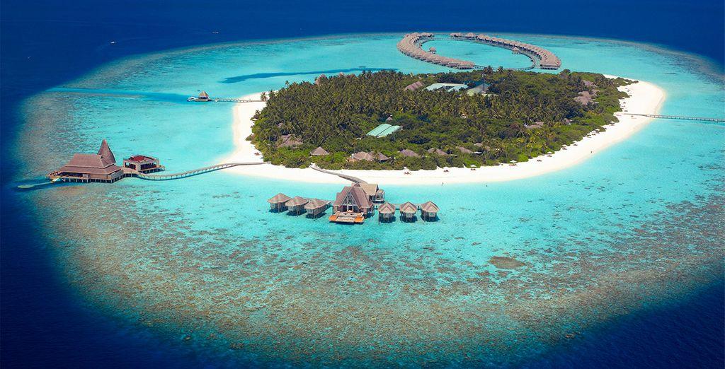 A tropical island idyll