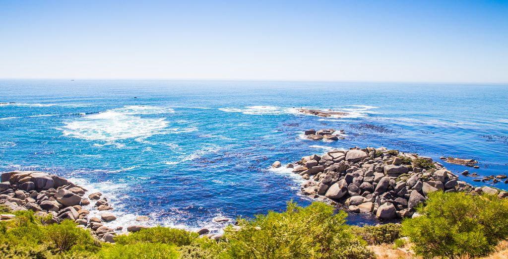 And along the spectacular Garden Route
