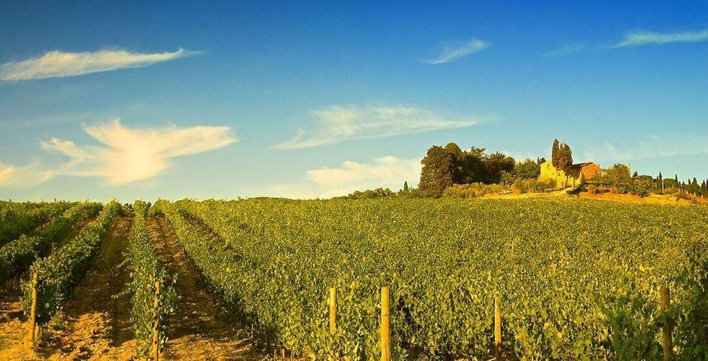 Experience the wonderful Tuscan countryside - UNA Palazzo Mannaioni**** - Tuscany - Italy Montaione