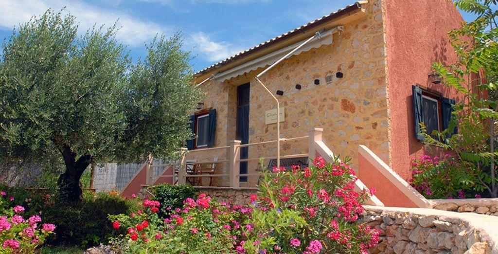 Both villas offer fantastic decor