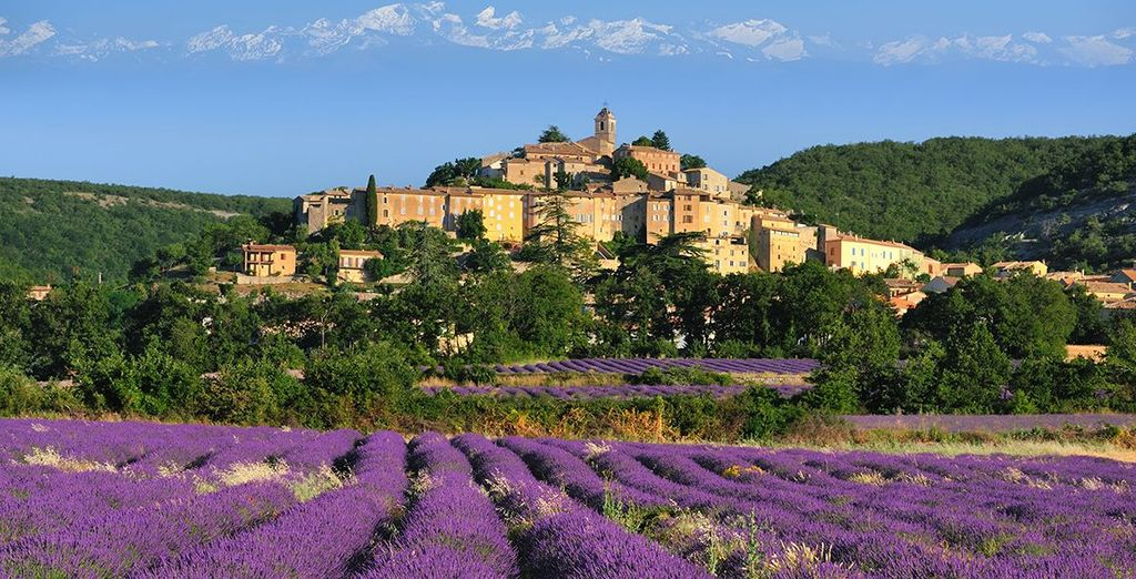 Discover the charming rural town of Noves, nestled in the heart of Provence