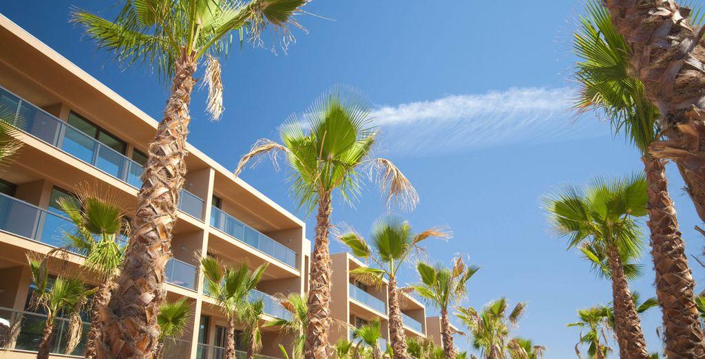 At Palm Village Suites