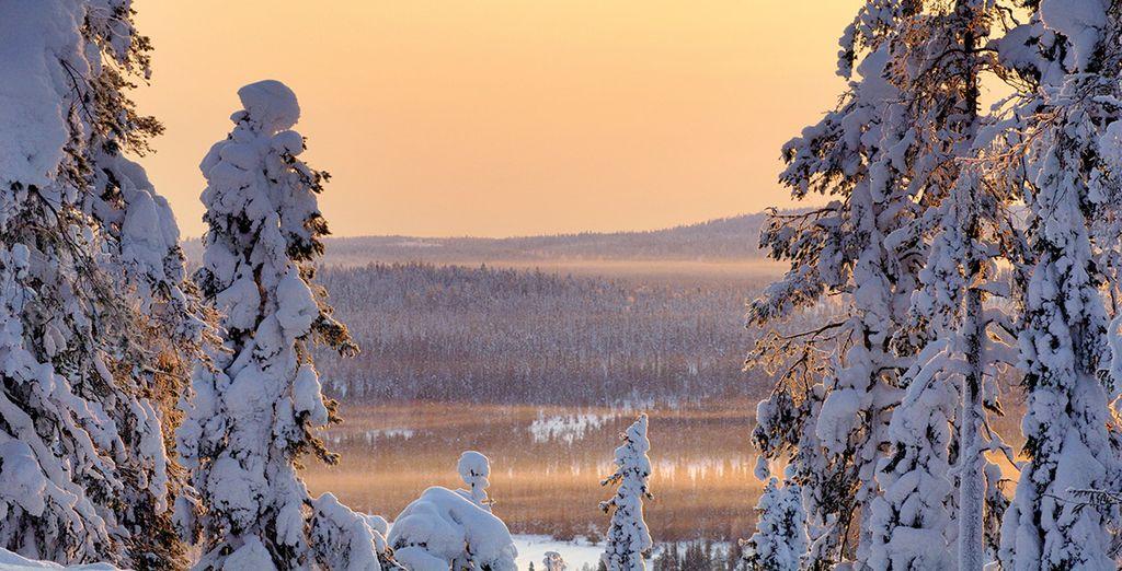 Ski through stunning winter landscape
