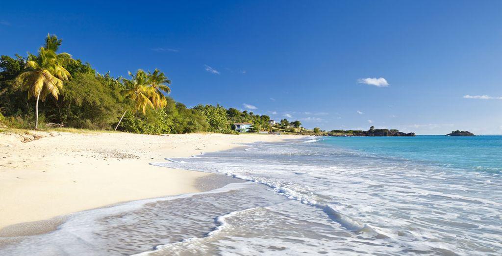 Laze in the Caribbean sunshine on the Leeward Island of Antigua