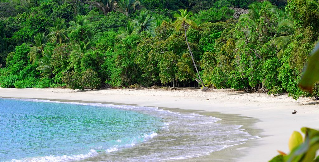To secluded, pristine palm-fringed beaches