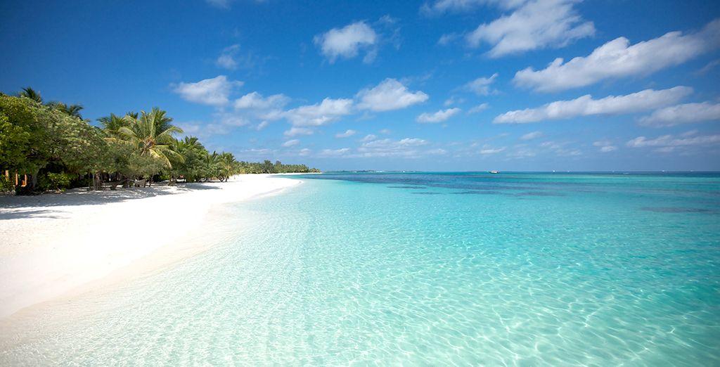 honeymoon package to Mauritius