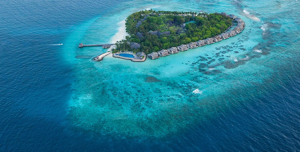 Experience a paradise island escape in the Maldives